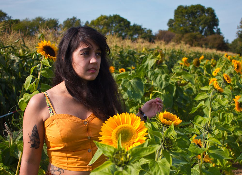 This is the best thing I&#39;ve ever written. Please read and share.  Sunflowers:  https:// buff.ly/2yiK0Cp  &nbsp;   #sunflowers #representation<br>http://pic.twitter.com/BsJKIgqdMB
