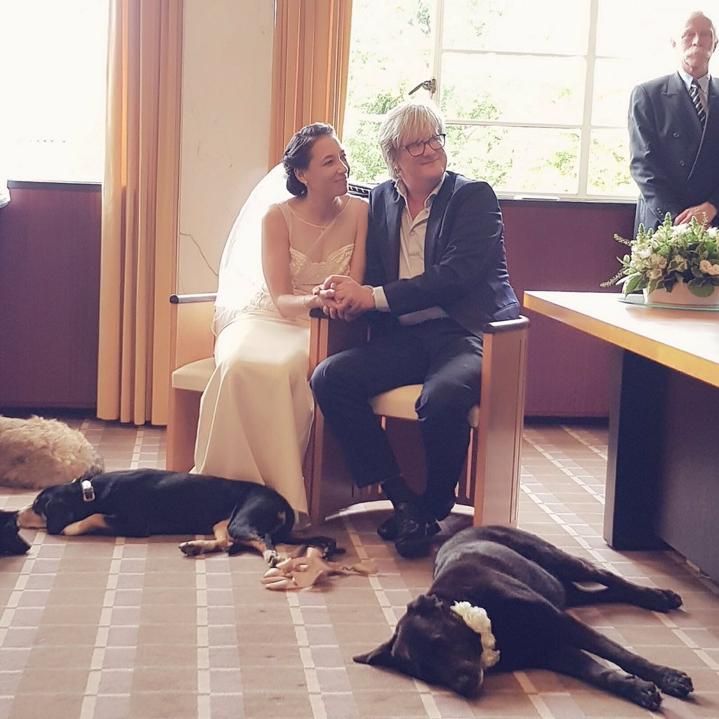 The Dodo On Twitter This Couple Had The Best Reaction After A - After a stray dog crashed their wedding this couple had the best reaction ever