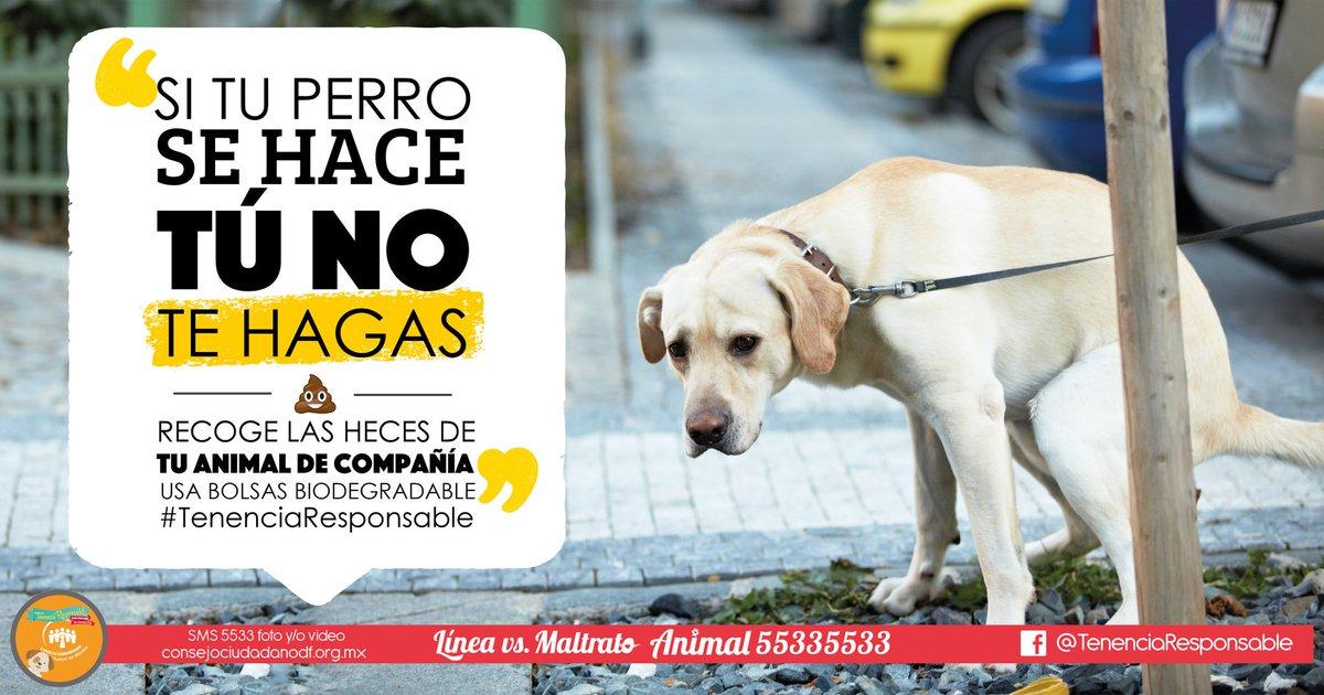 hugoD&C... (@HugoLopezZamora) | Twitter