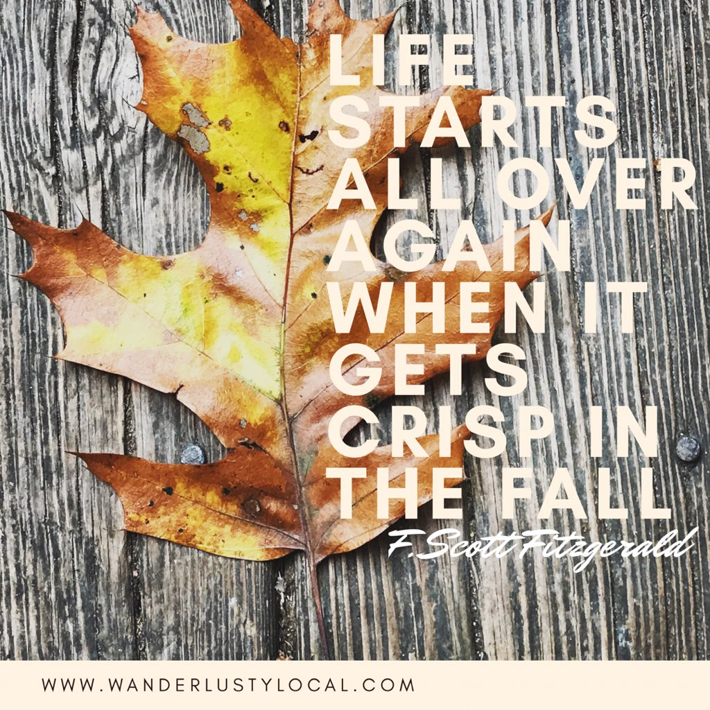 It&#39;s beginning to feel like fall  #newbeginnings #changing #changingseasons #wanderlustylocal #quote #quotesforlife<br>http://pic.twitter.com/R0Vc4XP6OH