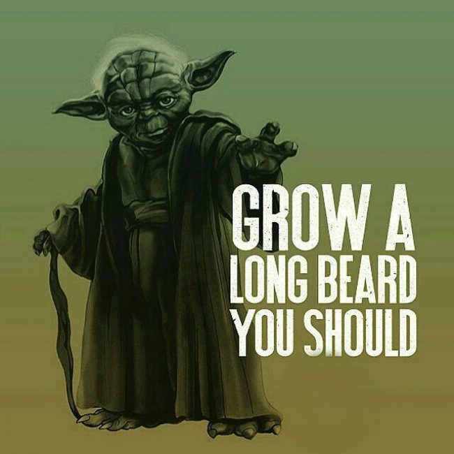 GROW A LONG BEARD YOU SHOULD ...    #beard #bearded #beards <br>http://pic.twitter.com/VeL1TRRufN