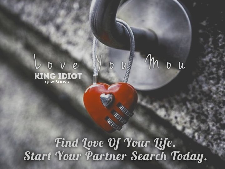 Search love partner