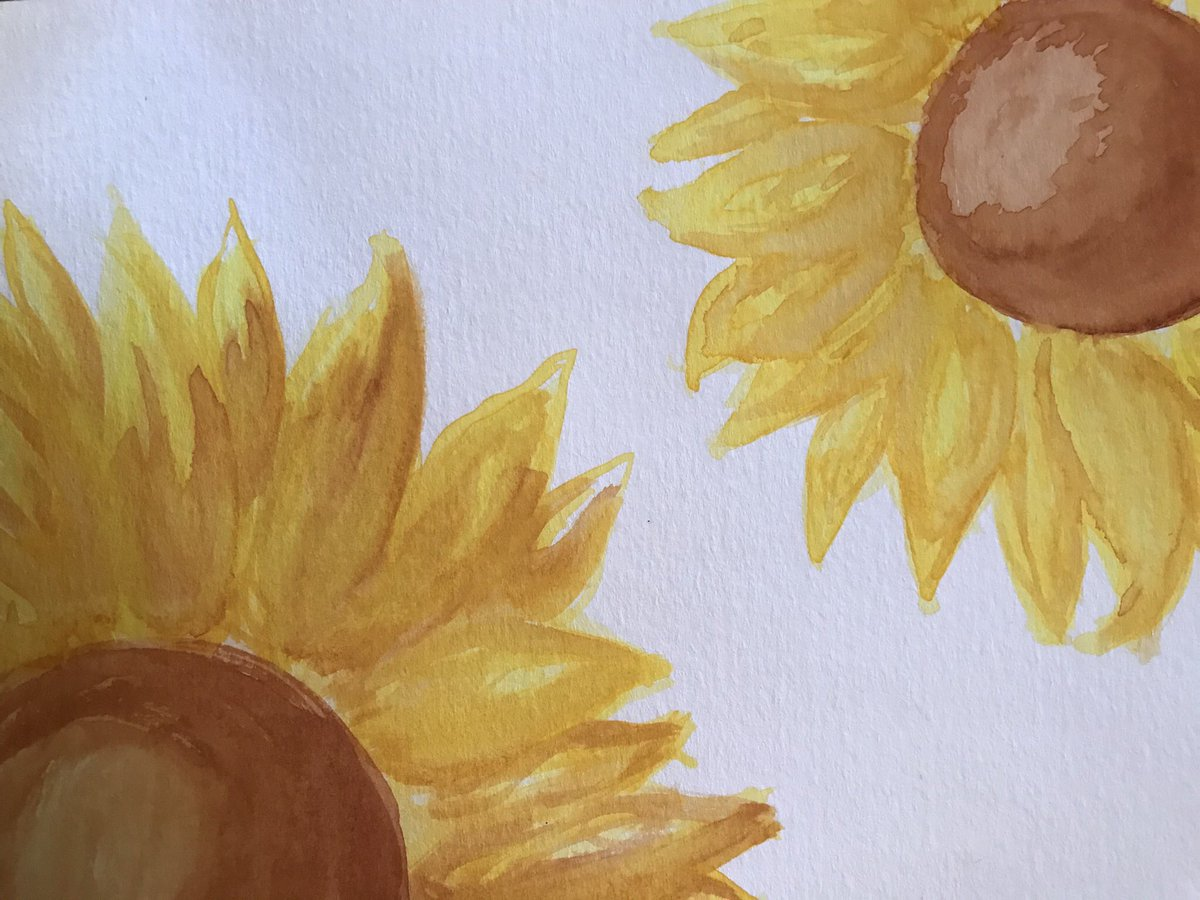 First watercoloring  #artisttwitter #watercolors #sunflowers <br>http://pic.twitter.com/VoYAqanQGP