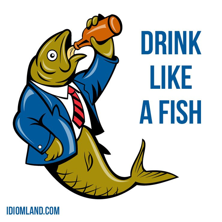 "Hello everybody!  Our #idiom of the day is ""Drink like a fish"", which means ""to drink too much alcohol"".   #english #idioms <br>http://pic.twitter.com/nbF8yy0VfR"