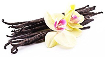 #Vanilla #bean - #love, #lust, #passion, and #restoring lost #energy. Carried to increase energy &amp; #strengthen #mental #abilities.<br>http://pic.twitter.com/mgMwmjQX8O