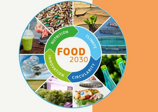 Harnessing Research and Innovation for FOOD 2030