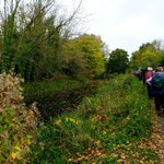 Autumn colours on our canal and Toadsmoor walks.