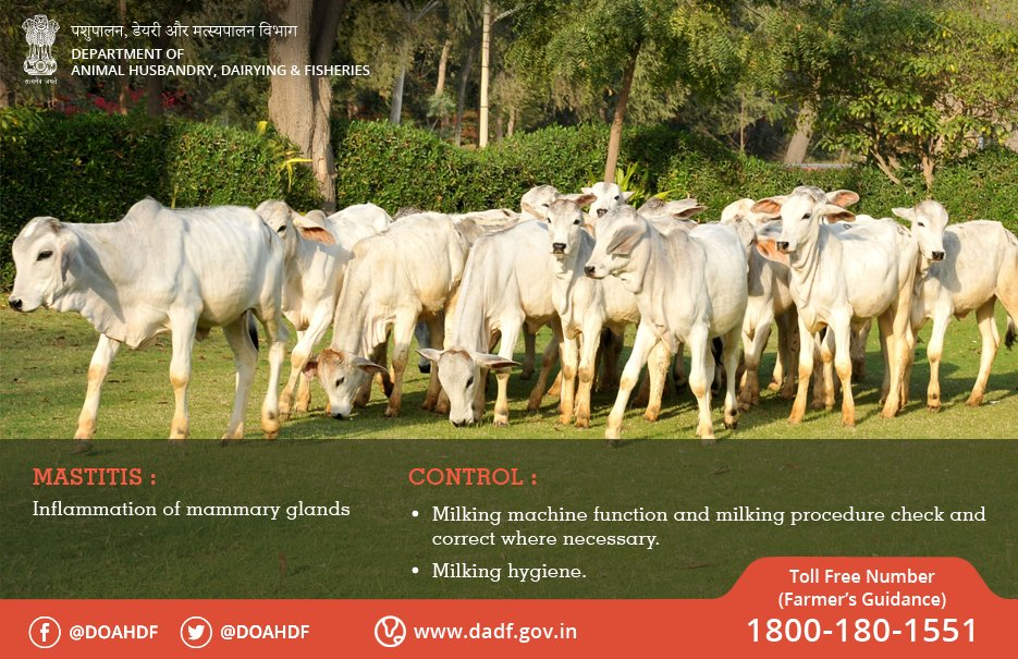 Livestock&Fish-India on Twitter: