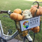 So excited for #fall! Guess the # of mini-pumpkins we fit in the basket of our @zagster bike & you could win fabulous goodies & a free ride!