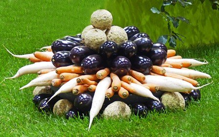 free Gardening: Hydroponics