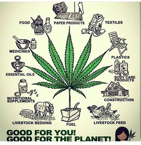 #Hemp has thousands of benefits and great potential to change our world!! <br>http://pic.twitter.com/GJOlaXzk90