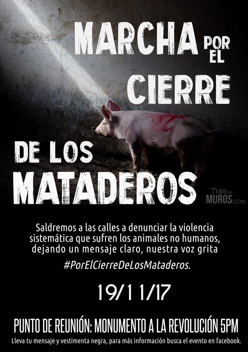 Marcha por el cierre de los mataderos @ México DF | Ciudad de México | Ciudad de México | México
