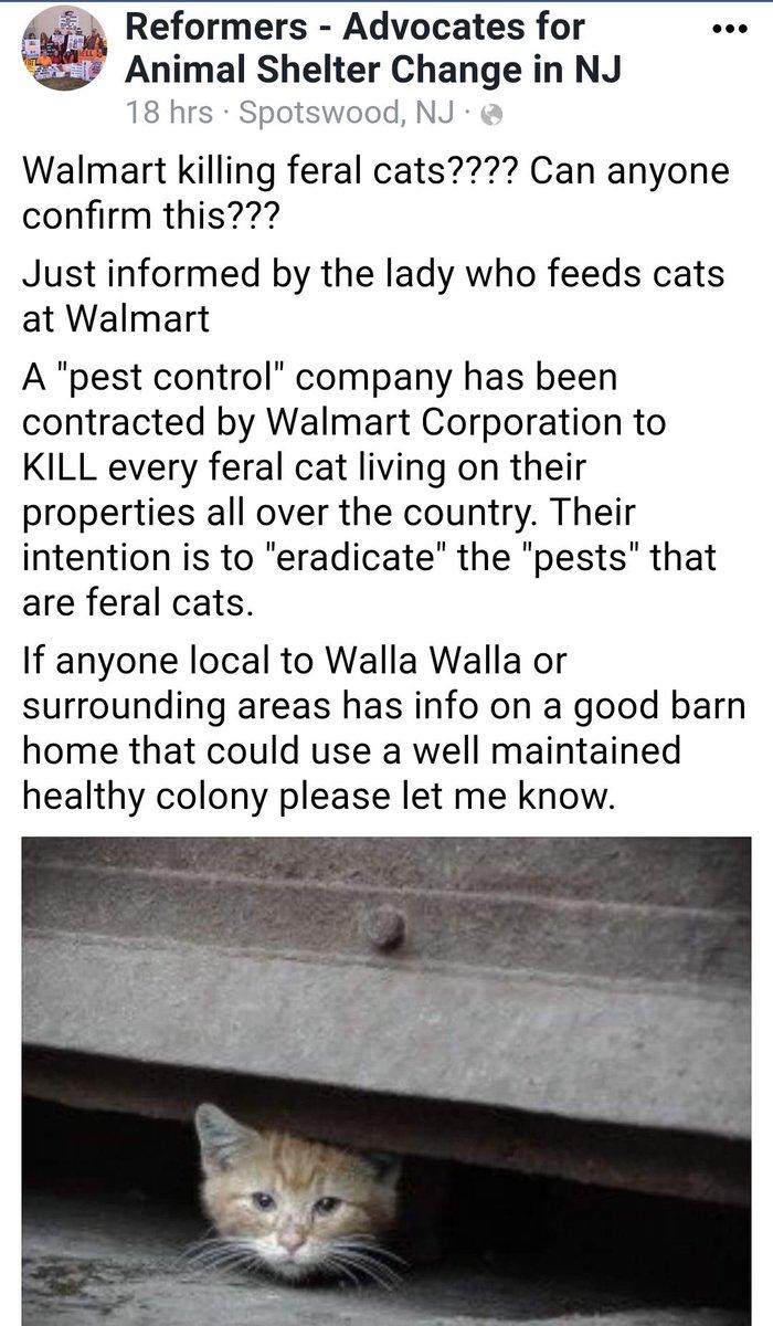 #NewJersey #Walmart hired exterminator! Stop Killing #cats #Walmart @walmarthelp  https:// m.facebook.com/REFORMERSNJ/  &nbsp;   @alleycatallies @dodo @ABC7NY<br>http://pic.twitter.com/xKBMo1rzrD