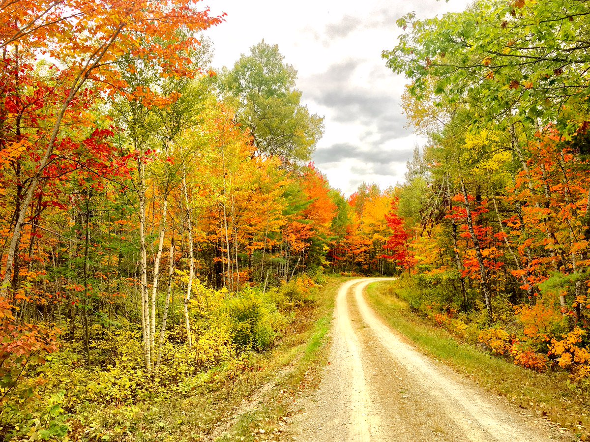 Fall colors are popping up at Moosehorn #WildlifeRefuge in #Maine