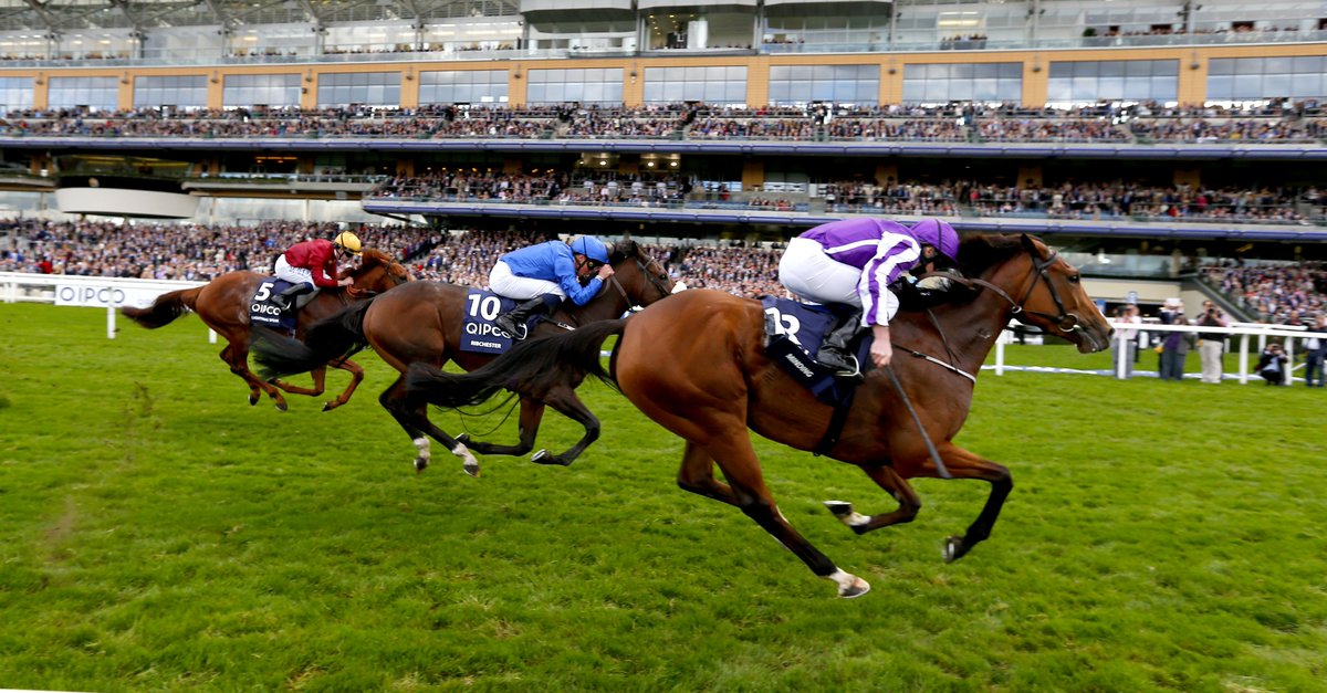 Ribchester among 17 in Queen Elizabeth II Stakes @Ascot on #Champions Day. Watch interview with @RichardFahey  ▶️ https://t.co/r7aqWRckDT