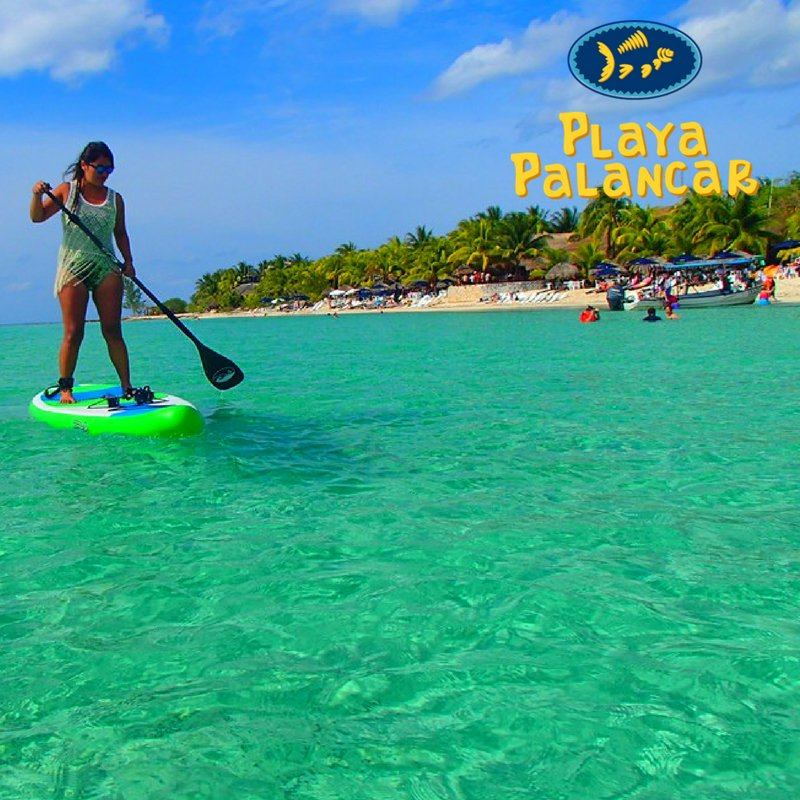 You can also practice paddle board in #Cozumel, visit us in #PalancarBeachClub #MondayMotivation #Mexico #FelizLunes  <br>http://pic.twitter.com/nwj0LE49aC