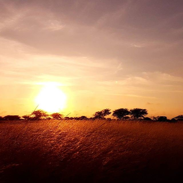 Reposting @robertmagier: I have never been to Africa, but this reminds me this continent. #africa #peru #southamerica #sunset #landscape<br>http://pic.twitter.com/C9jxuZkEpV