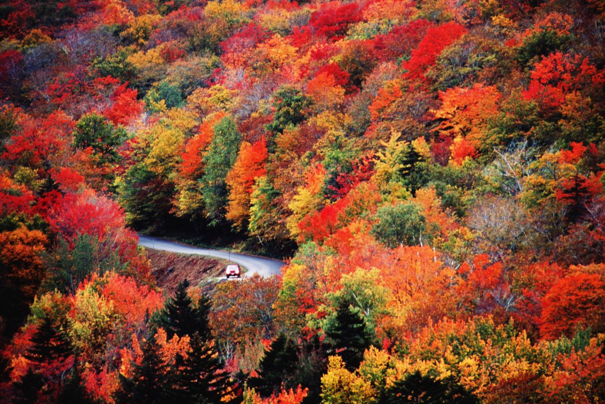 Visiting New England, USA in Autumn need...