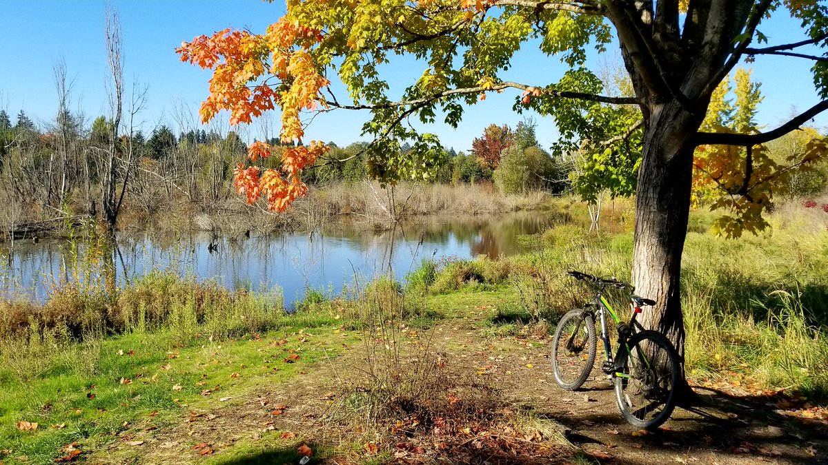 Last sunny day before the rains come. Biked 13 miles #mtb #cycling #OptOutside<br>http://pic.twitter.com/RJMcM1UWTJ