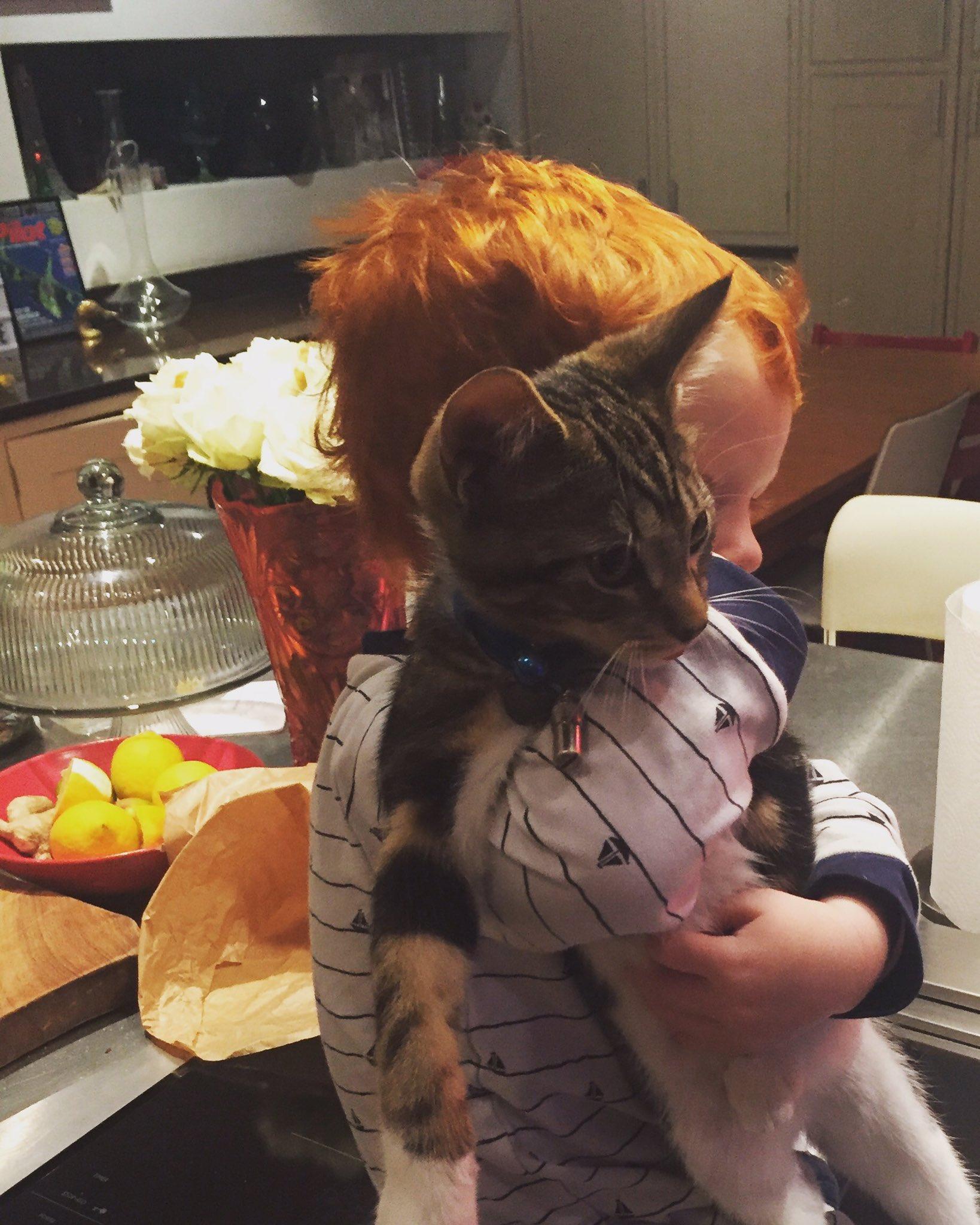 Very tolerant cat 🐱 ❤️👌🏻 https://t.co/PoIYakP9VN