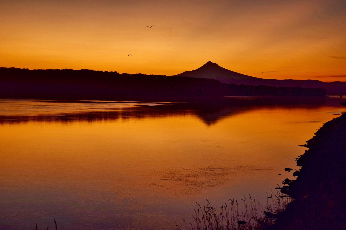 ICYMI:  the sunrise this AM over @inMtHood and a glassy Columbia River was AMAZING! I happen to have my camera ... #LiveOnK2 #pdxtst #omht<br>http://pic.twitter.com/DGZ2xpUIYd