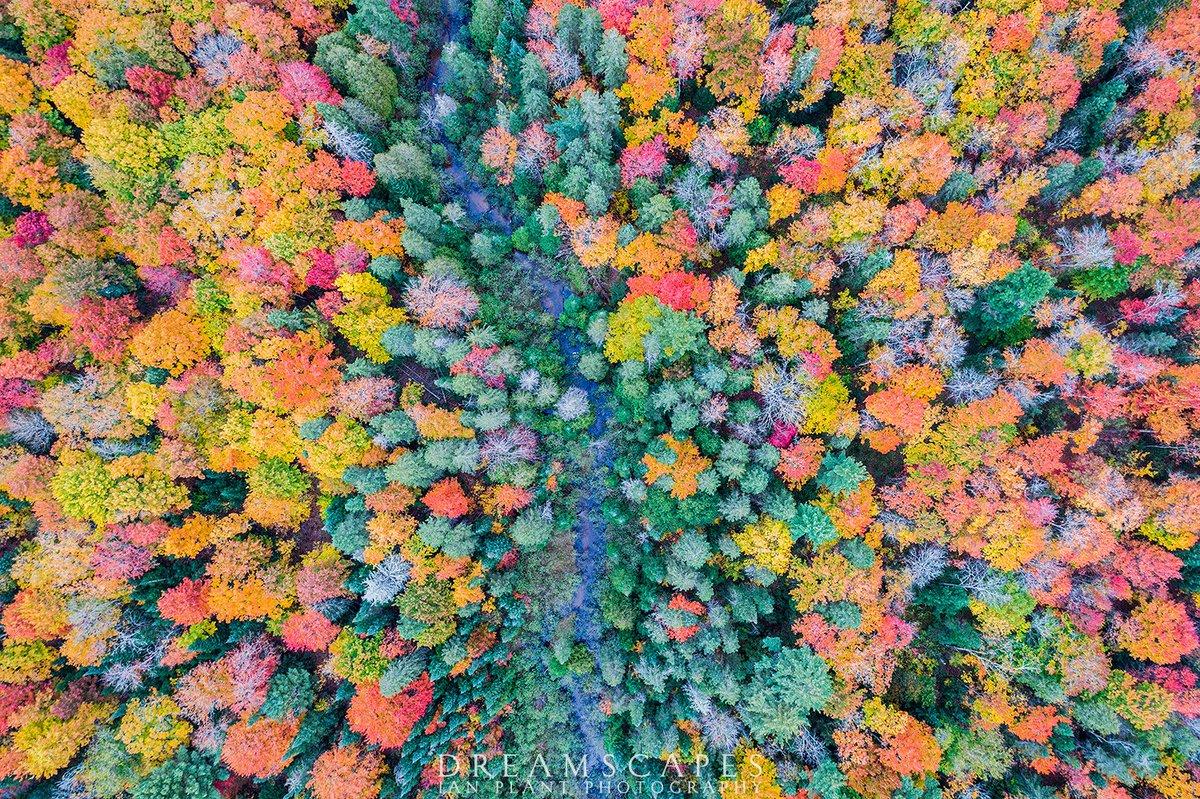 Aerial view of autumn color, Michigan's Upper Peninsula, USA. DJI Phantom 4 Pro drone, ISO 100, f/3.2, 1/50 second. https://t.co/LaAvZIli46