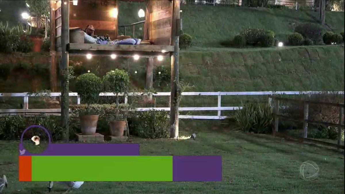Flávia, Matheus e Marcelo se assustam em noite na casa da árvore 😂😂😂...
