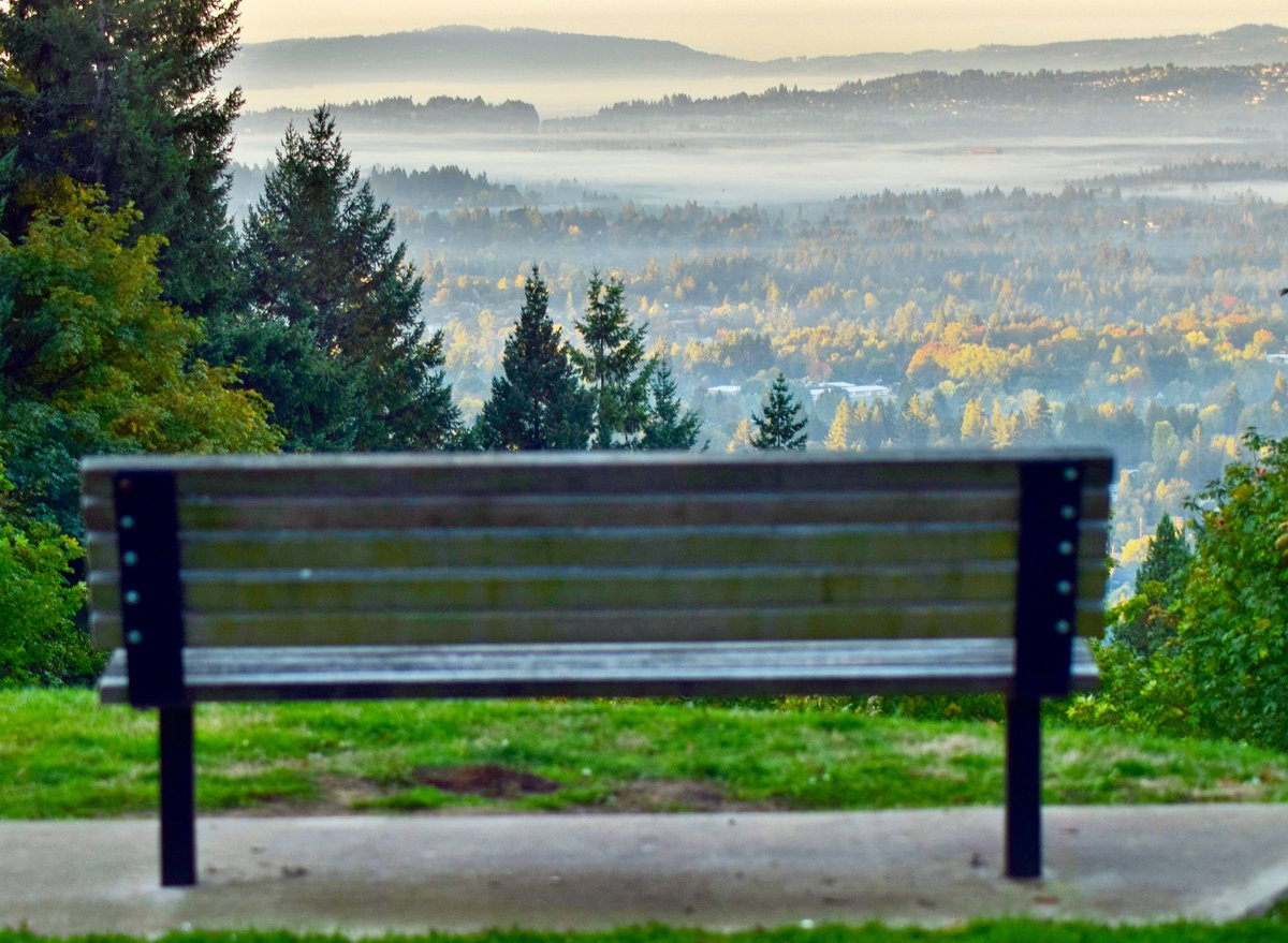 Wow!  patchy fog and beautiful fall colors made for the perfect view at Council Crest Park this morning #LiveOnK2 #pdxtst #orfallfoliage<br>http://pic.twitter.com/cM4aj0F6Ms