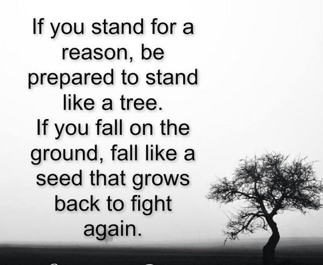 Inspirational Quotes On Twitter If You Stand For A Reason Be