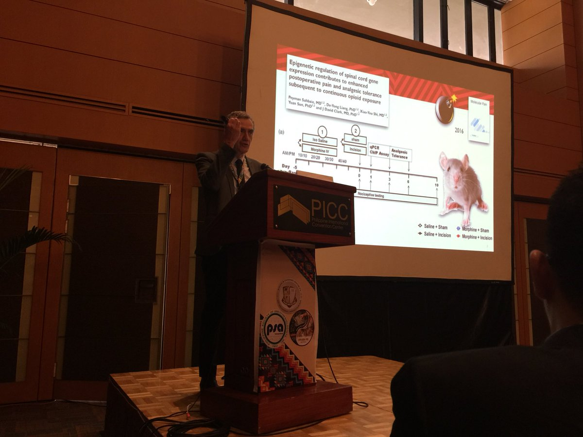"""""""Pain Management: A Second Look"""" Philippe Macaire Regional Block better than Opioids #AOSRA2017 #PainManagement #regionalanesthesia<br>http://pic.twitter.com/Yj3ACzzaN7"""