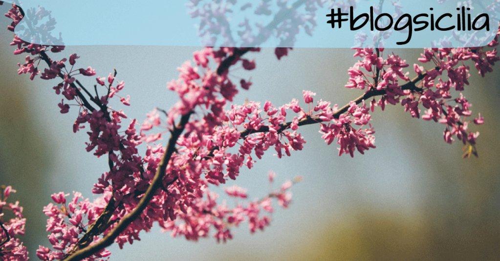"""""""È più facile deviare il corso di un fiume o spianare una montagna che cambiare l'animo di un uomo.""""  Buongiorno da #blogsicilia"""