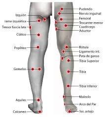 Como aliviar el dolor del nervio ciatico con masajes
