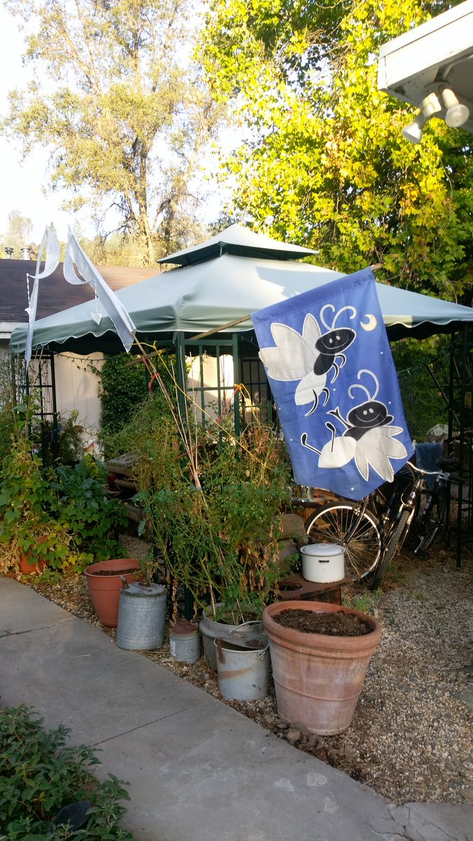 We decorate our gazebo with living eatab...