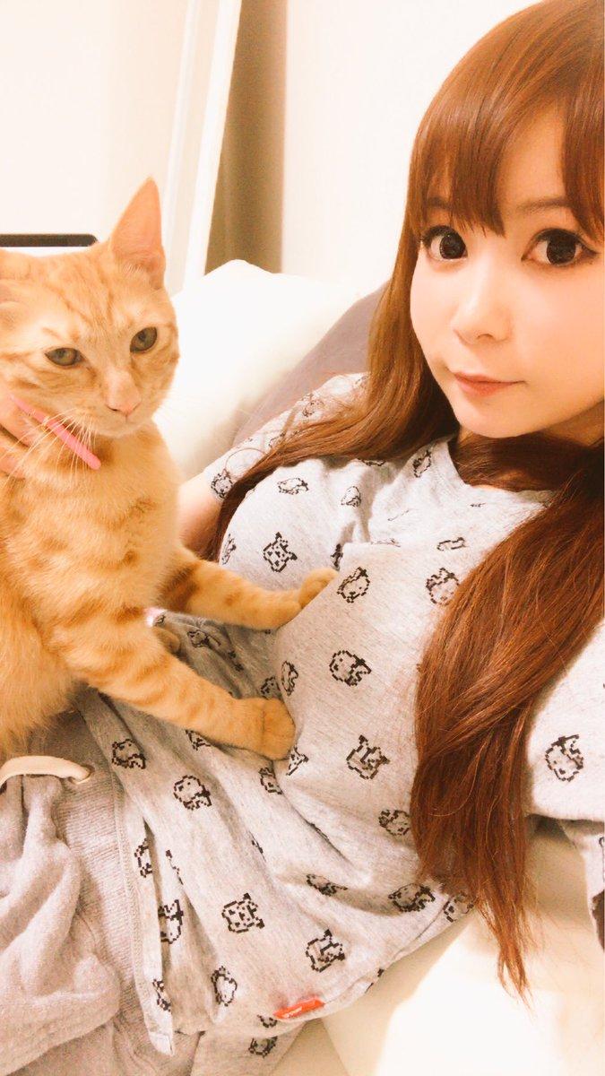 愛猫メポと中川翔子
