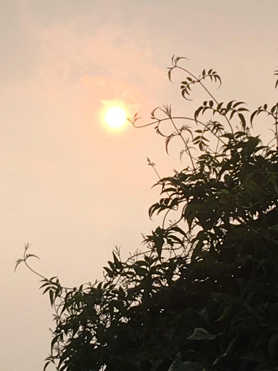 Daytime #Skywatching #eerie #REDSUN #celestial #balloffire<br>http://pic.twitter.com/oNaMGqH3Ps &ndash; à Primrose Hill