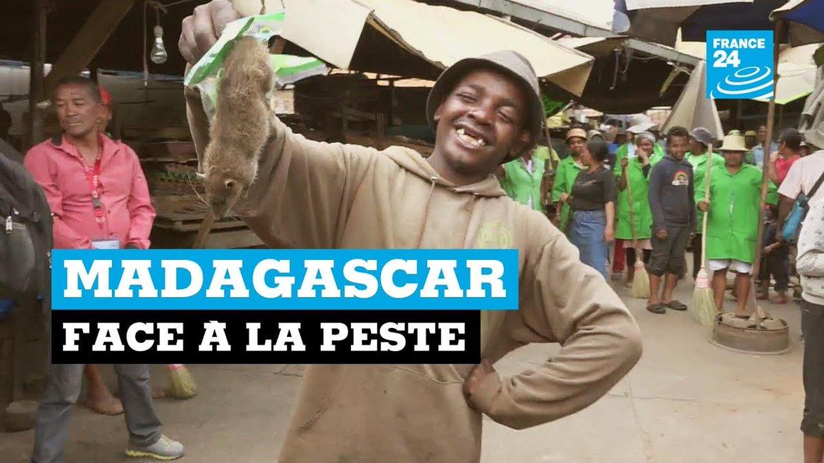 Madagascar face à la peste https://t.co/wkXY7svcxr