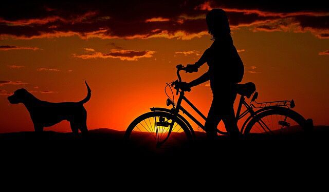 Light Up Your #Bike    Click This Link  http:// bit.ly/2oov6oU  &nbsp;    #Mountainbike  #bikelife #london<br>http://pic.twitter.com/Q3LluivqgW