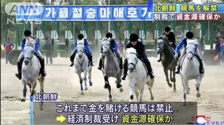 北朝鮮の競馬、芦毛しかいない。基礎種牡馬が一頭しかいなくて全部同じ芦毛のホモ遺伝子を持つ馬の産駒なのでは? https://t.co/b82YSY4gyy