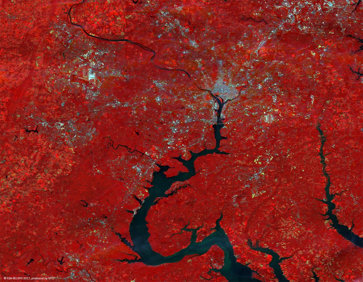 #ProbaV images #WashingtonDC, venue of #GEOweek17 next week to explore the use &amp; applications of #EO #DataMatters!  http:// bit.ly/PROBA-V_IOTW  &nbsp;  <br>http://pic.twitter.com/djt4N8nDnZ
