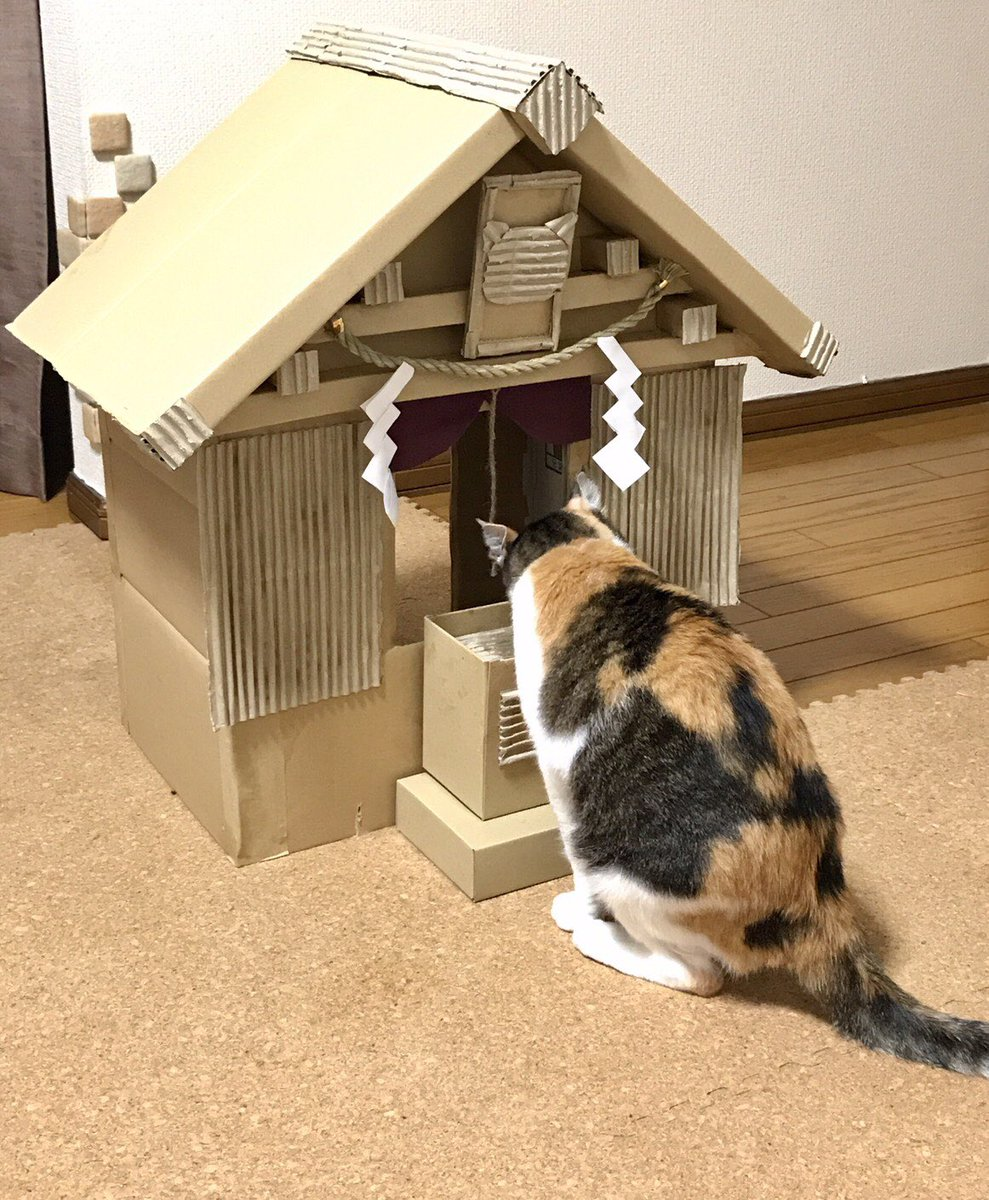 お参りも上手な御神体15歳三毛猫とデザインが猫なことにご不満の5歳チワワもおりました。 pic.twitter.com/jqQJlNO2S9