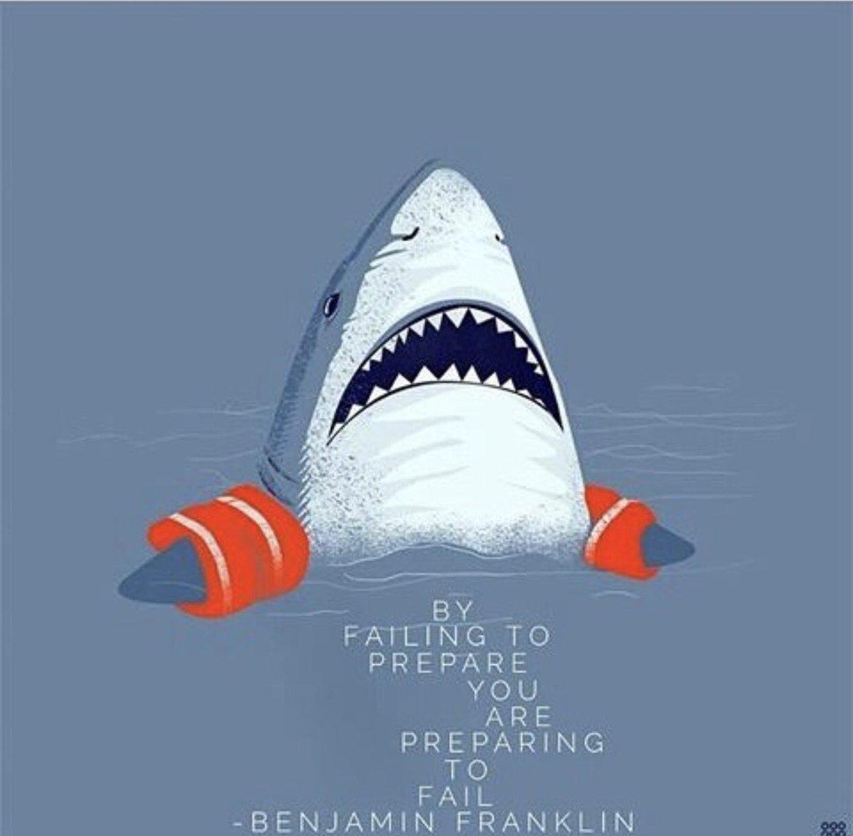 louise shark louiseshark twitter pic com dvvdgvfo07