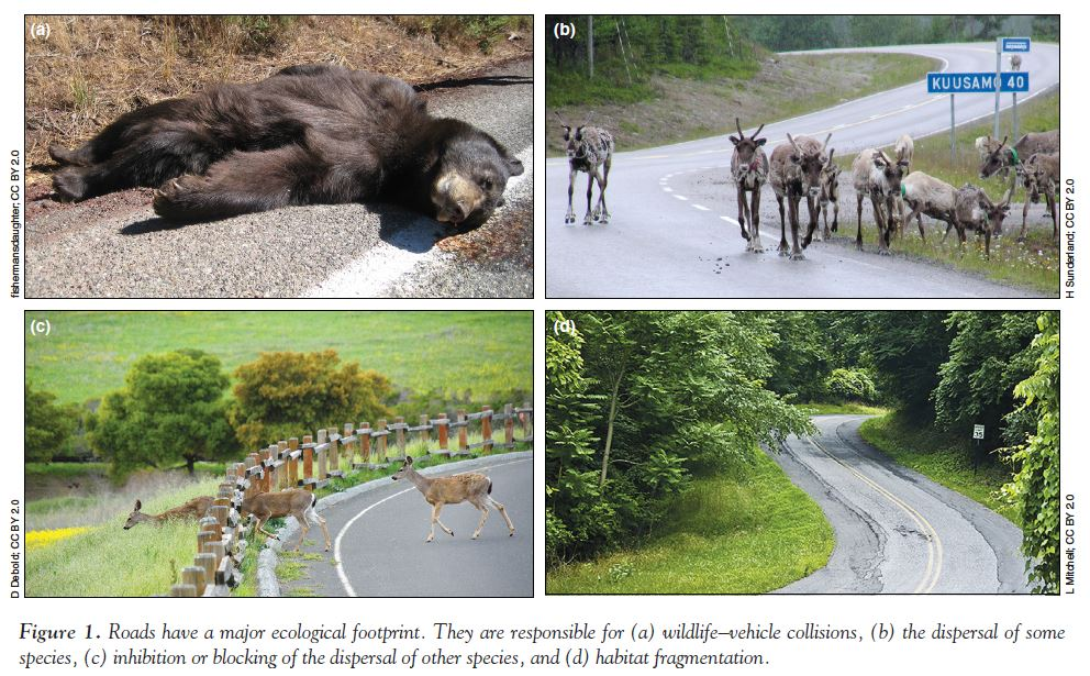 """ESA Frontiers on Twitter: """"Gaseous pollutants affect many ... Air Pollution Effects On Animals Pics"""