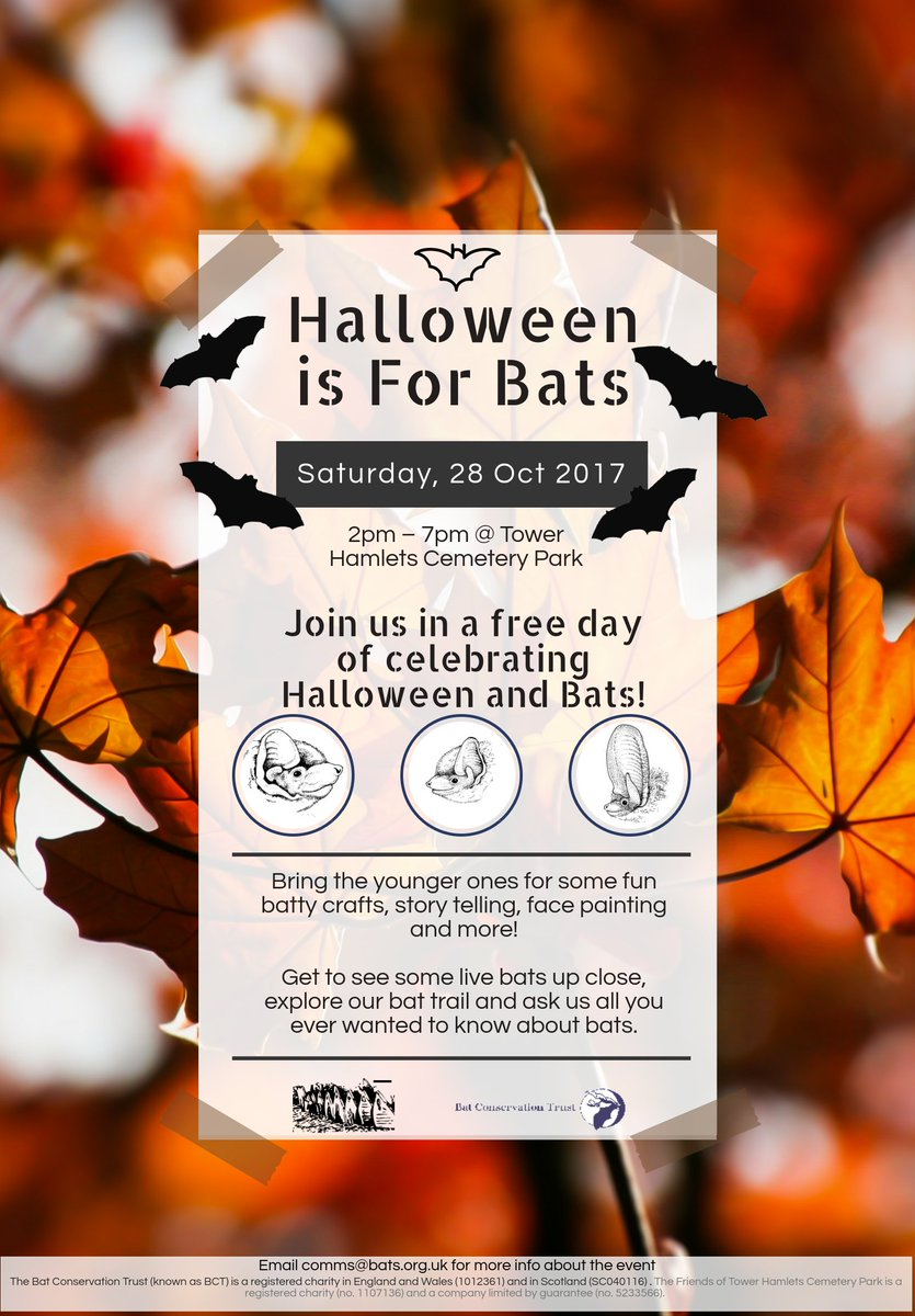 "batconservationtrust on twitter: ""halloween is for bats event"