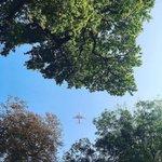 Eine der letzten #AirBerlin Flieger über den verherbsten Bürgerpark-Bäumchen #tegelschliessen #herbst #pankow #ber… https://t.co/BZSao1lKk7