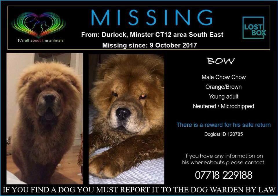 #missing #durlock south East #CT12pic.twitter.com/16VjVsgqX8