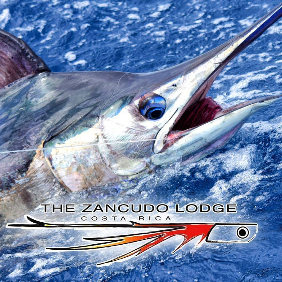 Zancudo Lodge - Costa Rica Offshore and Inshore Fishing Specialists  https://t.co/X64jJyD8TD