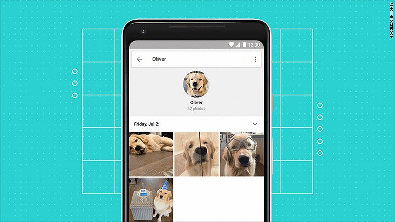 Google Photos can now identify your pets https://t.co/qqFaGNY9D8