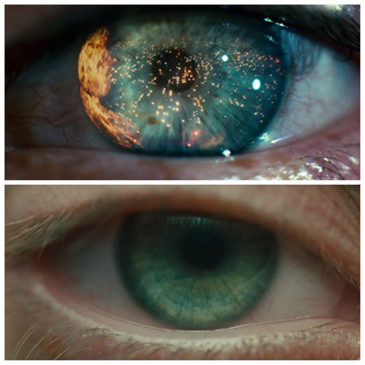 The eyes have it: #BladeRunner and #BladeRunner2049.<br>http://pic.twitter.com/CcCHVTi08t