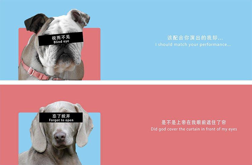 """朋友找设计师设计一套喜糖的包装盒,设计师给了一个""""单身狗粮""""方案。很难理解在结婚环节中强调单身狗是什么逻辑。近期看过最烂的设计 https://t.co/XdBESukULU 1"""