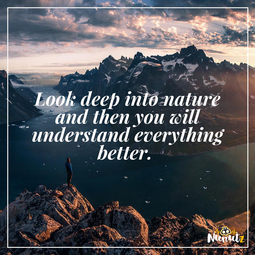 Nunutz On Twitter Indeed Nature Quotes Quoteoftheday Words